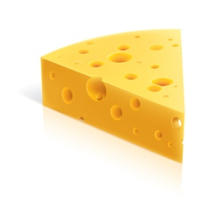 cheese slice vector image