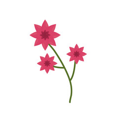 flower branch spring icon vector image