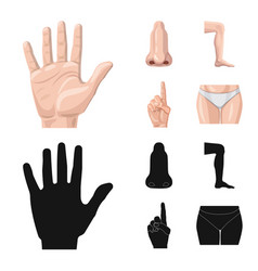 Design of human and part icon collection vector