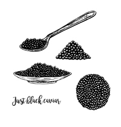 hand drawn set plate with black caviar vector image