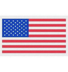 of the usa flag vector image