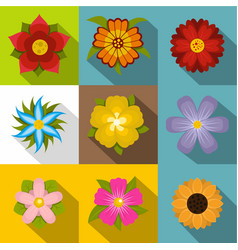 summer flowers icons set flat style vector image