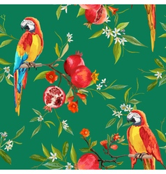 Tropical Flowers Pomegranates and Parrot Birds vector
