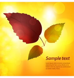 autumn leaf background with sample text vector image vector image