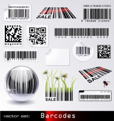 barcodes vector image vector image