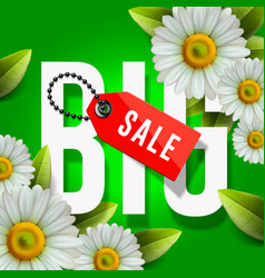 Big spring sale poster green background vector