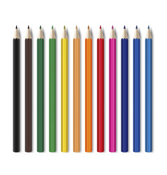 colored pencils set for bright colorful drawing vector image