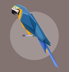 flat polygonal blue-and-yellow macaw vector image