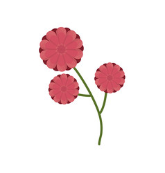 Flower branch spring icon vector