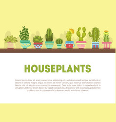 houseplants banner template with cute cactus and vector image
