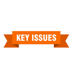 Key issues ribbon key issues paper band banner vector