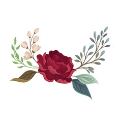 Large rose on a branch with leaves vector