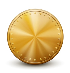 One big golden coin vector image
