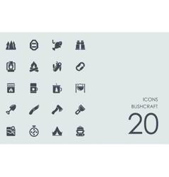 Set of bushcraft icons vector image