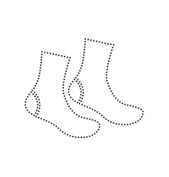 socks sign black dotted icon on white vector image