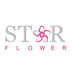 star flower logo vector image