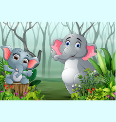 two elephants in the forest with dry tree branches vector image