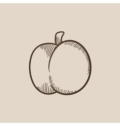 Plum with leaf sketch icon vector image vector image