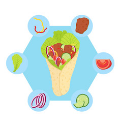 shawarma ingredients flat style vector image