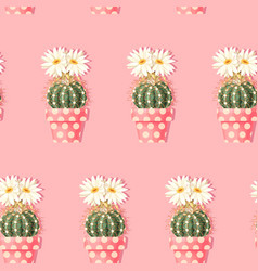 Cactus with pink flowers on light background vector