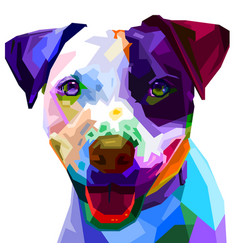 Colorful boston terrier dog on pop art style vector