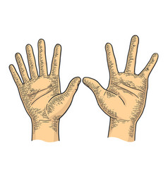 Hands with six and four fingers color sketch vector