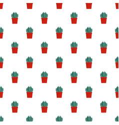 house cactus pot pattern seamless vector image
