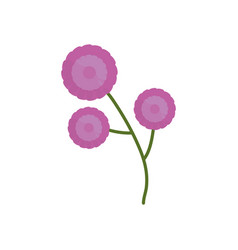 purple flower branch spring icon vector image