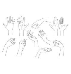 set linear drawing female hands vector image