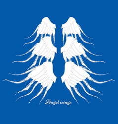 set of three different wings collection of vector image