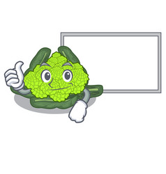 thumbs up with board roman cauliflower in the vector image