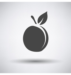 Peach icon on gray background vector