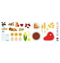 vitamin b1 foods flat icons set with pasta yolks vector image