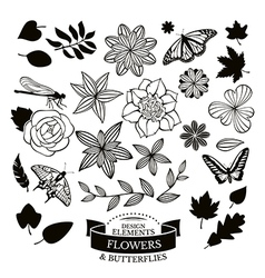Set of flowers and leaves and insects vector image