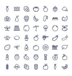 49 organic icons vector
