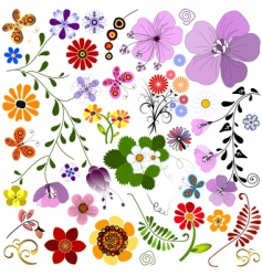 Big collection flowers and butterflies vector