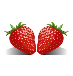 Juicy berries strawberries vector