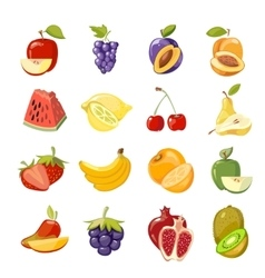 Juicy fruits collection vector