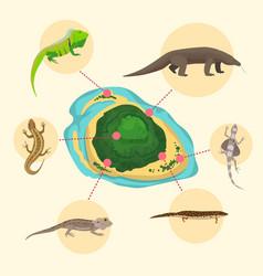 Komodo dragon american sand lizard exotic vector