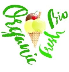 Organic ice cream Eco dessert Fresh food vector