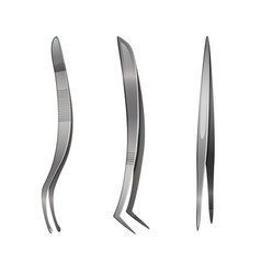 Set of steel tweezers isolated on white vector