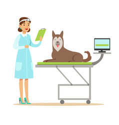 Smiling female veterinarian examining dog in vet vector