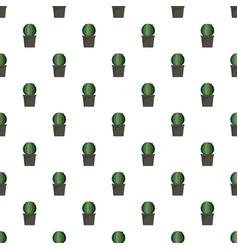 sphera cactus pot pattern seamless vector image