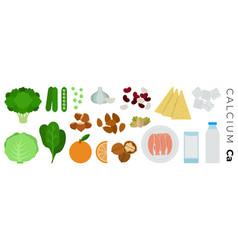 vitamin calcium foods flat icons set vector image