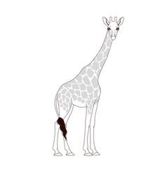 coloring book giraffe vector image