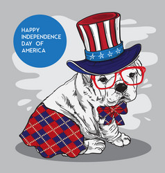 doggy character fun independence day america vector image