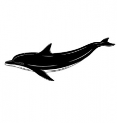 dolphin tattoo vector image
