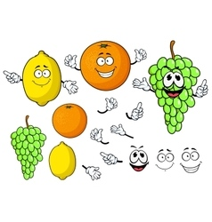 Happy cartoon grape lemon and orange fruits vector image