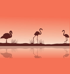 lake scenery and flamingo silhouettes vector image