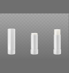 lip balm sticks or hygienic lipstick cosmetic set vector image